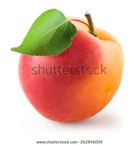 Apricot with leaf isolated on white. With clipping path - stock photo