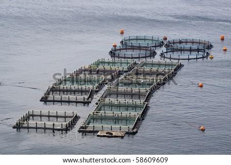 Aquaculture - stock photo