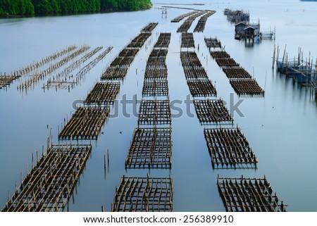 Aquaculture in chanthaburi,Thailan - stock photo