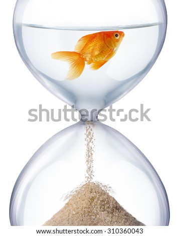 Aquarium hourglass. It symbolizes the transience of time and changes in life.