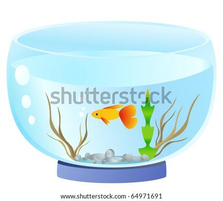 aquarium.raster - stock photo