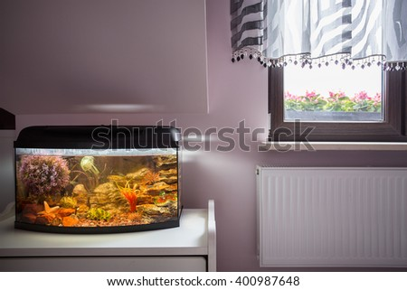 Aquarium with exotic fishes and coral reef - stock photo