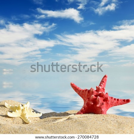 Aquatic background.Color starfishes on sandy beach, travel concept - stock photo