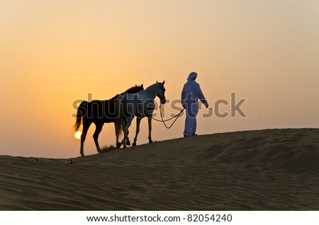 Arab Man with Arabian Horse in the Arabian Desert during the sunset - stock photo
