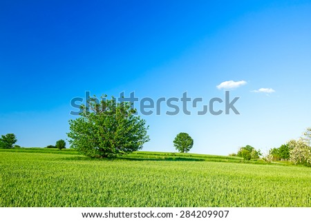Arable land in a hilly landscape at sunny morning with cloudy sky.