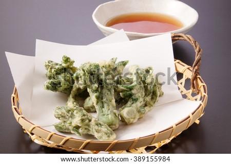 Aralia Sprout TEMPURA - stock photo