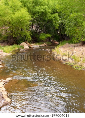 Aravaipa Creek is a protected riparian habitat in southeastern Arizona. - stock photo