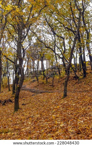 Arbor with columns in the autumn forest.