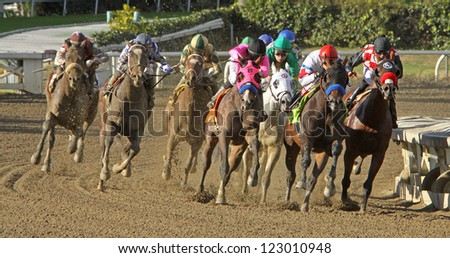 "ARCADIA, CA - DEC 26: Jockey Rafael Bejarano (red cap) guides ""Belvin"" to his first win at historic Santa Anita Park on Dec 26, 2012 in Arcadia, CA. - stock photo"