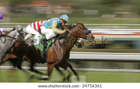ARCADIA, CA - FEBRUARY 7, 2009: Riley Tucker, with Eclipse-award winning jockey Garrett Gomez aboard, wins an allowance race at Santa Anita Park, Arcadia, CA, on Feb 7, 2009.