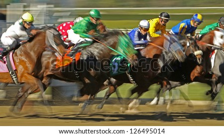 ARCADIA, CA - JAN 17: A field of thoroughbred horses breaks from the gate in a claiming race at historic Santa Anita Park on Jan 17, 2013 in Arcadia, CA. - stock photo