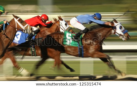 "ARCADIA, CA - JAN 17: Jockey Edwin Maldonado and ""Catienus Gold"" (#5) race to a 3rd place finish in a claiming race at Santa Anita Park on Jan 17, 2013 in Arcadia, CA. - stock photo"