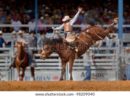 ARCADIA, FLORIDA - MARCH 9: Champion bronco rider hangs on his horse at the famous 84th All-Florida Championship Rodeo on March 9, 2012 in Arcadia, Florida - stock photo