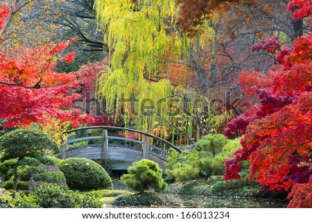 Arched wooden bridge accented by Texas fall colors