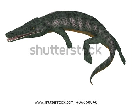 Archegosaurus Amphibian Tail 3D Illustration - Archegosaurus was an amphibian tetrapod that lived in Europe during the Permian Period.