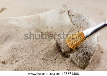 Archeology search for lost artifacts concept - stock photo