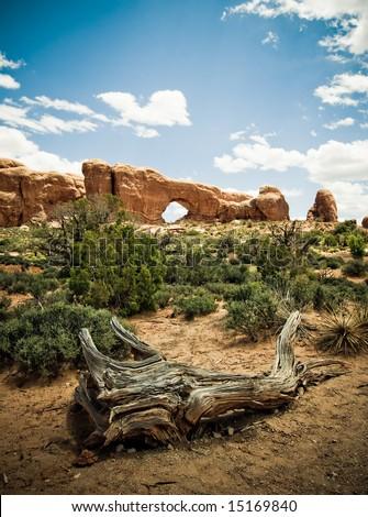 Arches National Park, Utah, USA - stock photo