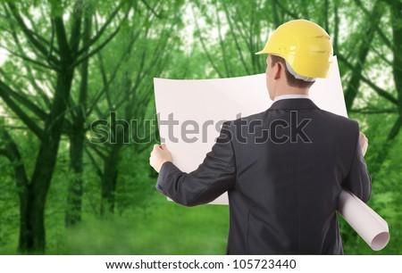 architect engineer  expertise team plan talking hardhat forest  trees  Photo - stock photo