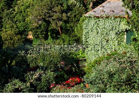 Architectural detail in Portofino village, Ligurian Coast, Italy - stock photo