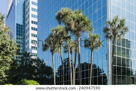 Architectural detail with palm of Modern Building in Orlando, Florida, USA - stock photo