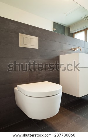 Architecture, comfortable apartment, bathroom view