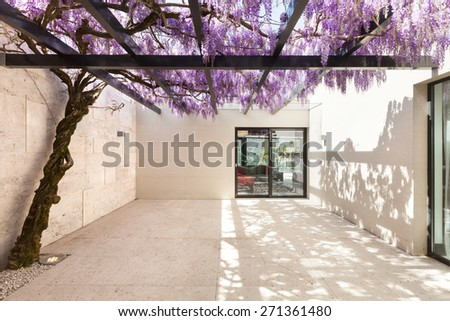 architecture, modern house, beautiful veranda with wisteria - stock photo