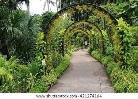 Archway, Botanic Gardens, Singapore - stock photo