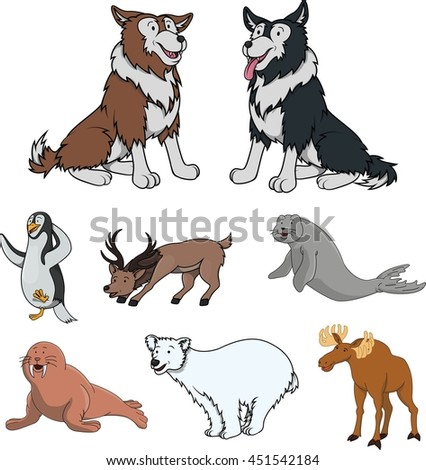 Arctic animal cartoon