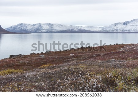 Arctic landscape in Greenland in late summer and early autumn with snowy mountains and ocean - stock photo