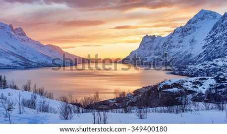 Arctic Landscape of Norway