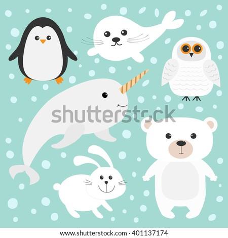 Arctic polar animal set. White bear, owl, penguin, Seal pup baby harp hare rabbit narwhal unicorn-fish. Kids education cards. Blue background with snow flake Isolated. Flat design. - stock photo