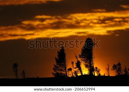 Arctic sunset on the taiga at Wapusk national park, Canada. - stock photo