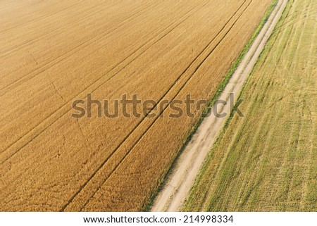 Areal view of crop fields in sunny summer day - stock photo