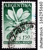 ARGENTINA - CIRCA 1956: a stamp printed in the Argentina shows Mate Herb and Gourd, Elevation of the Territory Misiones to Province, circa 1956 - stock photo