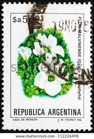 ARGENTINA - CIRCA 1983: a stamp printed in the Argentina shows Scurvy-grass Sorrel, Oxalis Enneaphylla, plant, circa 1983 - stock photo