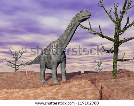 Argentinosaurus dinosaur standing on the cracked desert ground next to dead trees by cloudy weather