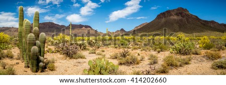 Arizona Desert Landscape  - stock photo