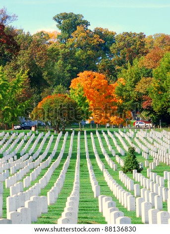 Arlington National Cemetery 8