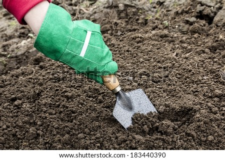 Arm in green glove with trowel which depicts the operation of the greenhouse - stock photo