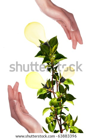 Arms and light bulbs. Symbol of environmental protection. Collage. - stock photo