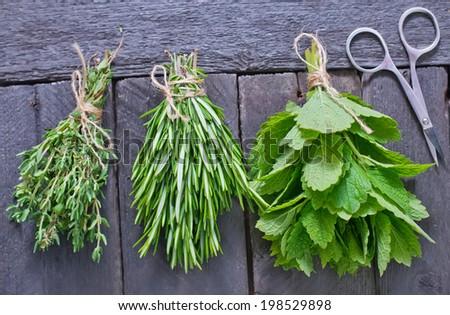 aroma herbs - stock photo