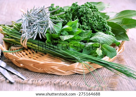 aromatic herbs in a basket on a wooden table, natural food - stock photo