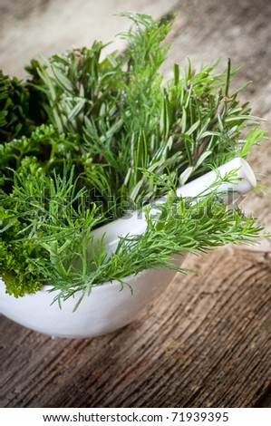 aromatic herbs over mortar - stock photo