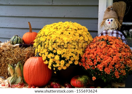 Arrangement from Flowers, Bale of Hay, Pumpkin, Squashes, Apples, Maize, Scarecrow and dry leaves in front of Old Barn as decoration for Thanksgiving Day.  - stock photo