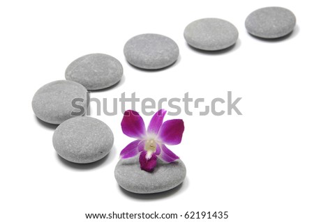 arrangement of flat rocks with macro of orchid - stock photo