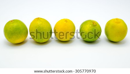 Arrangement of Fresh limes on white background  - stock photo