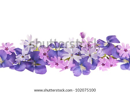 Arrangement of purple violets and moss pink flowers isolated on white background - stock photo