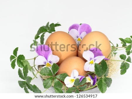 Arrangement of the Easter egg