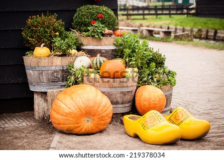 Arrangement with assorted pumpkins and holland clogs - stock photo