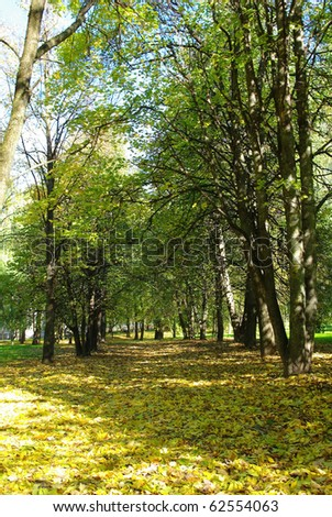 Arrival of autumn to Belarus - stock photo